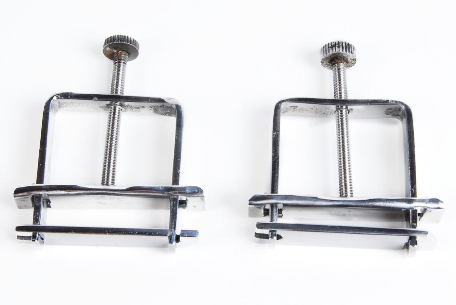 the nippitine nipple clamps, sold as pairs