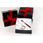 Small bdsm gift box by sex and metal only 24.99