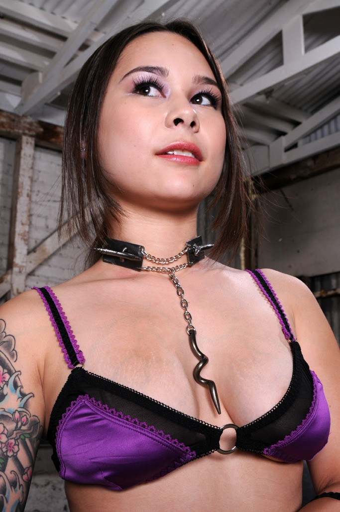 The Cresent - BDSM Collar