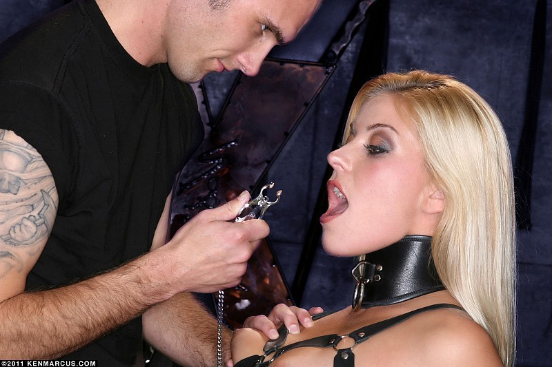 BDSM model shay golden about to go in the Japanese clover clamp