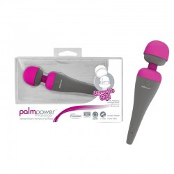 Palm Power Massager
