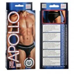Apollo Mesh Brief with C-Ring - Black L/XL