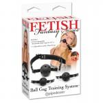 Fetish Fantasy Ball Gag Training System