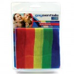 Gaysentials Rainbow Bandana