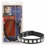 Leather Collar 1 Inch With Assorted Studs