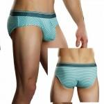 Male Power Heather Stripe Lo Rise Bikini Mint Sml