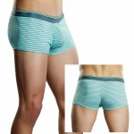 Male Power Heather Stripe Lo Rise Enhancer Short Mint Large