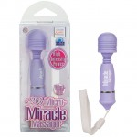 My Micro-Miracle Massager - Purple