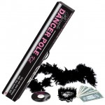 Private Dancer Pole Kit (Silver)